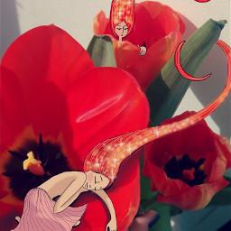 drawing sketch tulips nokialumia longhairdontcare