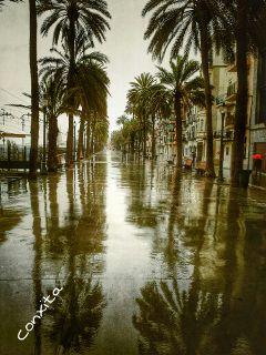 rain photography freetoedit