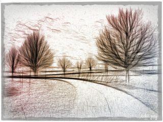 photography freetoedit nature