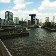 rotterdam erasmusbrug holland picart