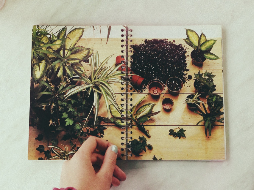 #garden  #book