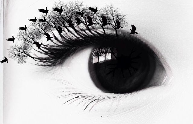 illusion photo editing contest winner