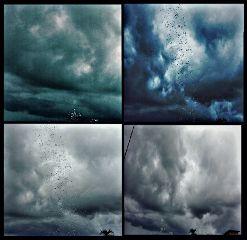 gdactioncollage rain