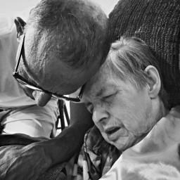 love dementia marriage truelovealways