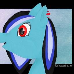 pony ponyoc