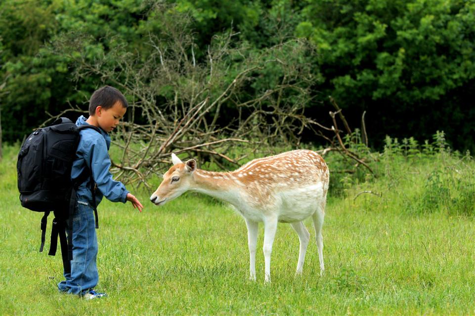 Meeting in the #nature 😎 #wppAnimals #Wildlife