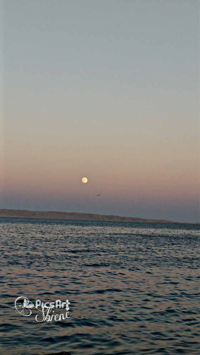 #sunset #moon#red sea  #photography #nature #emotions #love #hdr #yesterday  💞