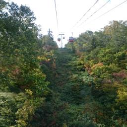 hokkaido autumn coloredleave colorful gondola